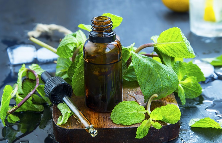 Peppermint Essential Oil for Everyday Living